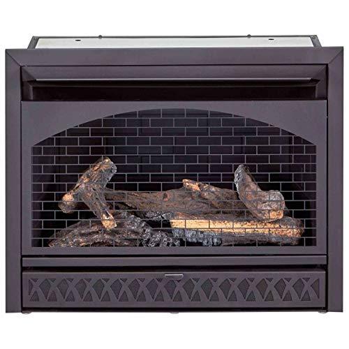 ProCom FBNSD28T Ventless Dual Fuel Firebox Insert 29 in 0 0