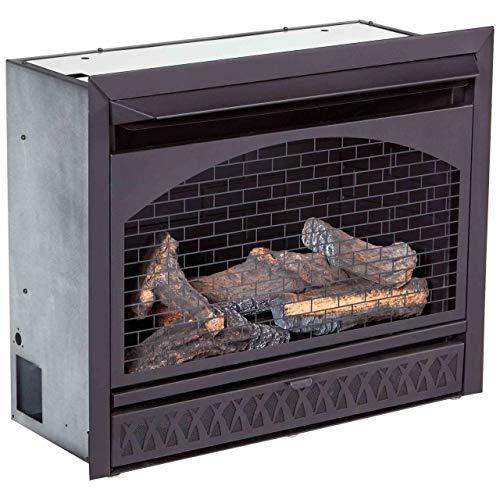 ProCom FBNSD28T Ventless Dual Fuel Firebox Insert 29 in 0 1